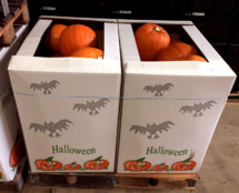 Halloween Karton 2 auf DHP