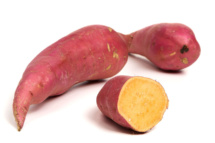 Süßkartoffel Fotoshooting Fuchs 2020